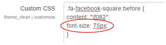 Social Media Icon Custom CSS Resize